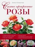 Галина Панкратова: Самые прекрасные розы
