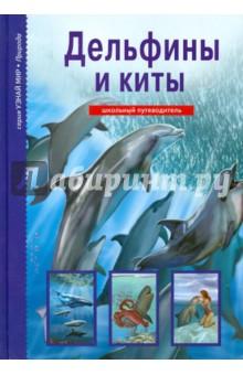 Дельфины и киты
