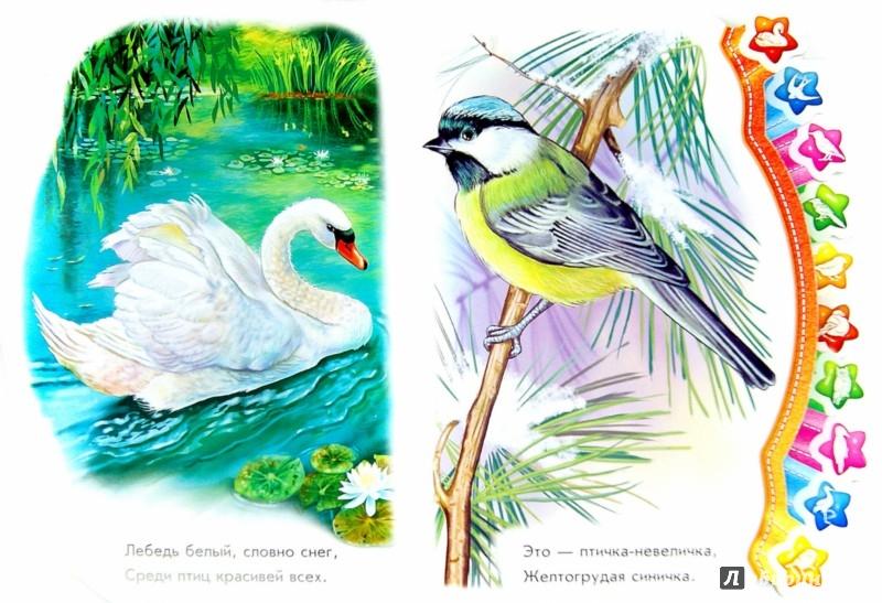 Иллюстрация 1 из 14 для В небе - Олеся Квитка   Лабиринт - книги. Источник: Лабиринт
