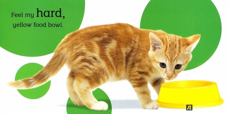 Иллюстрация 1 из 4 для Touch and Feel Kitten | Лабиринт - книги. Источник: Лабиринт