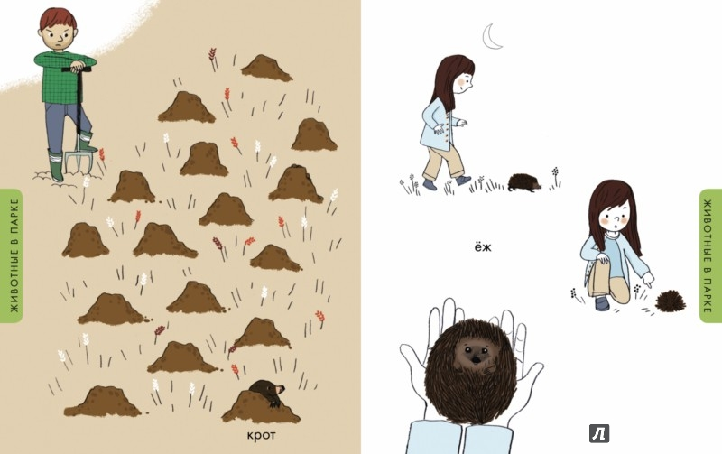знакомство с животными с детьми 3 4 лет