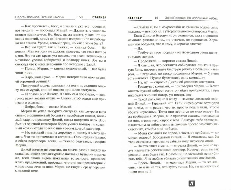 Иллюстрация 1 из 15 для Зона Посещения. Заложники небес - Вольнов, Смагин | Лабиринт - книги. Источник: Лабиринт