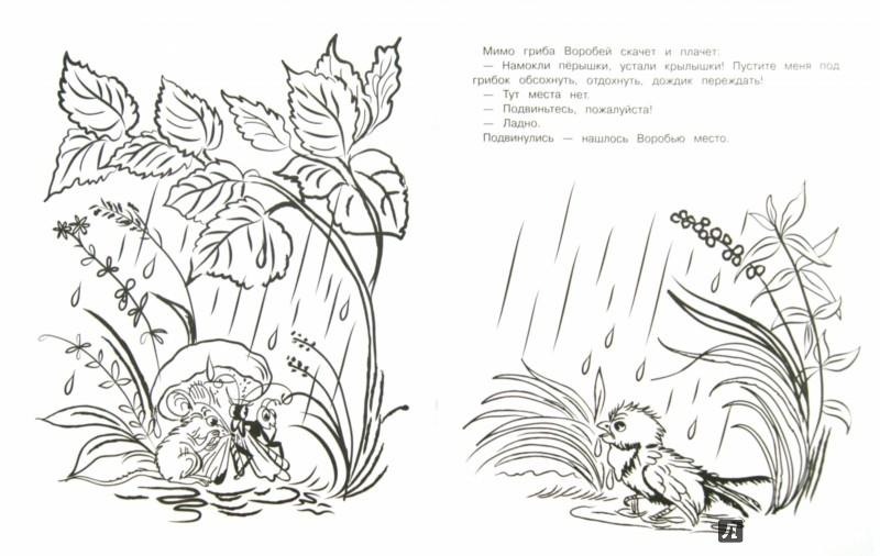 Иллюстрация 1 из 15 для Под грибом - Владимир Сутеев | Лабиринт - книги. Источник: Лабиринт