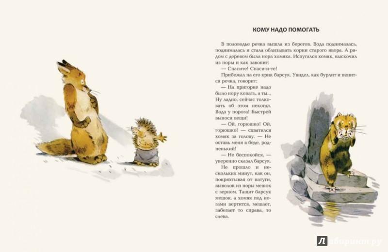 Иллюстрация 1 из 58 для Зачем ежу колючки - Вениамин Росин | Лабиринт - книги. Источник: Лабиринт