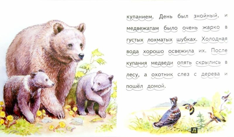 Иллюстрация 1 из 15 для Лис и мышонок - Виталий Бианки | Лабиринт - книги. Источник: Лабиринт