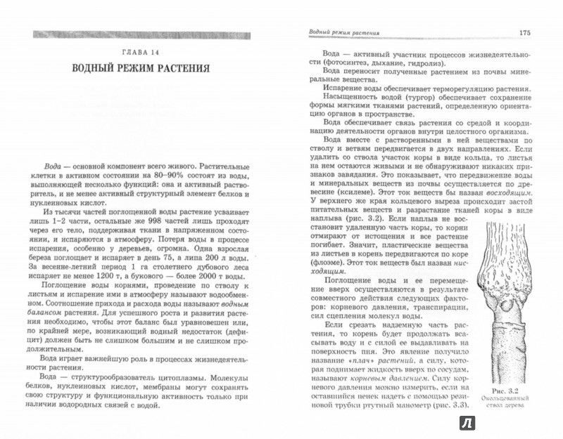 Иллюстрация 1 из 14 для Ботаника. Учебник - Брынцев, Коровин | Лабиринт - книги. Источник: Лабиринт