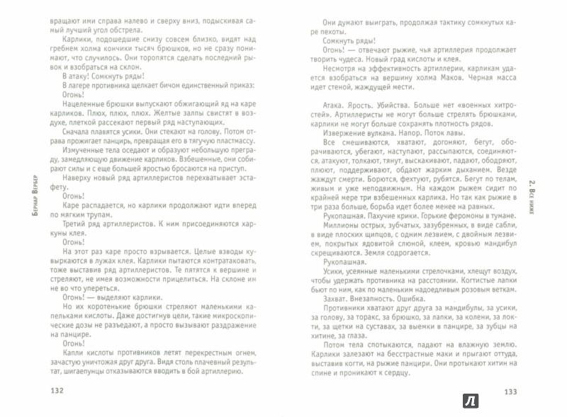Иллюстрация 1 из 11 для Муравьи - Бернар Вербер | Лабиринт - книги. Источник: Лабиринт