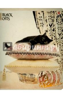 """Тетрадь общая """"Чёрные кошки"""" (48 листов, клетка, в ассортименте) (7-48-648)"""