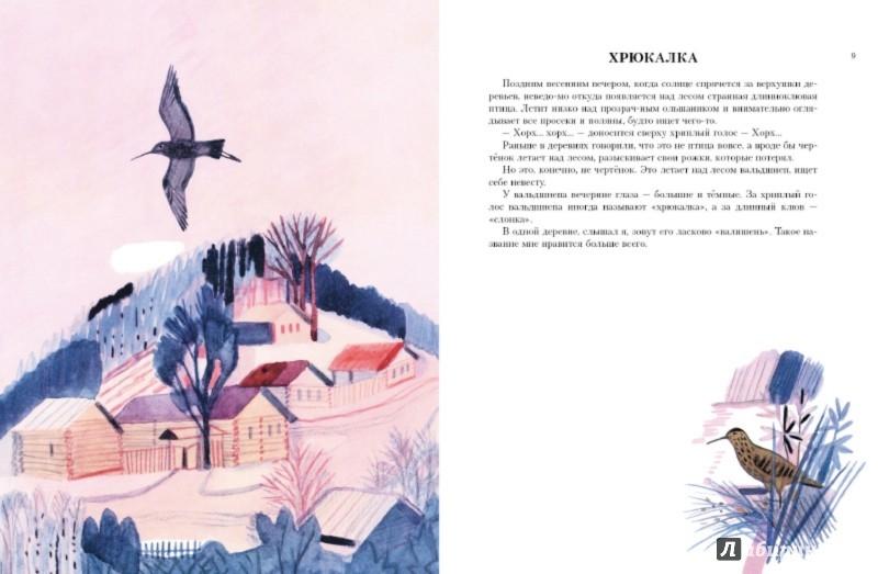Иллюстрация 1 из 36 для Воробьиное озеро - Юрий Коваль | Лабиринт - книги. Источник: Лабиринт