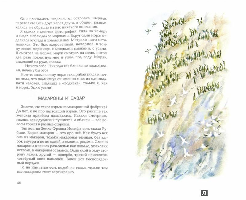 Иллюстрация 1 из 31 для В гостях у белого медведя - Олег Бундур | Лабиринт - книги. Источник: Лабиринт