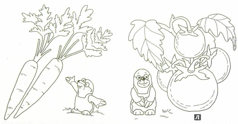 Иллюстрация 1 из 18 для Что растет на даче | Лабиринт - книги. Источник: Лабиринт