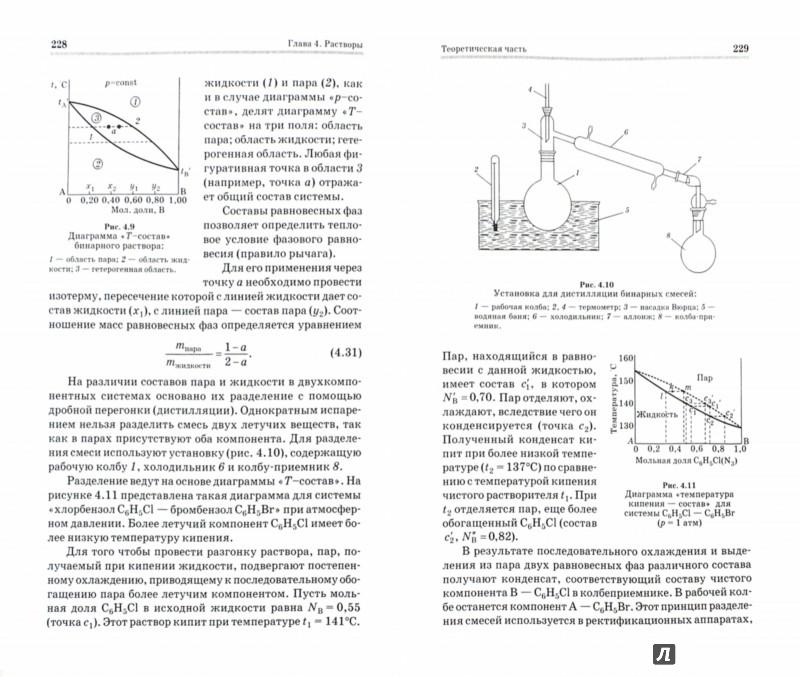 Иллюстрация 1 из 3 для Физическая химия. Учебное пособие - Попова, Попова | Лабиринт - книги. Источник: Лабиринт