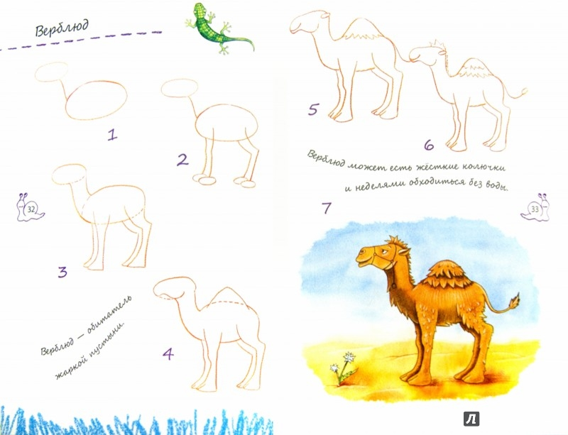 Иллюстрация 1 из 15 для Я учусь рисовать. Лучшие уроки для маленького художника - Ирина Зарубина | Лабиринт - книги. Источник: Лабиринт