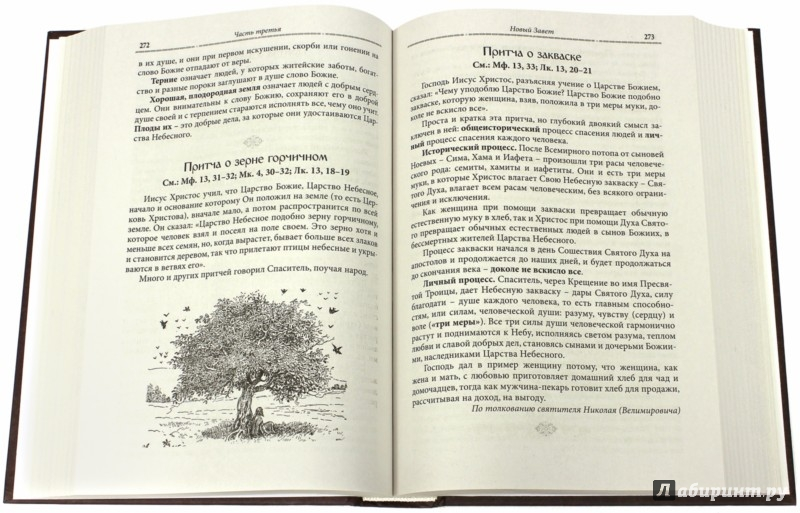 Иллюстрация 1 из 29 для Закон Божий - Серафим Протоиерей | Лабиринт - книги. Источник: Лабиринт