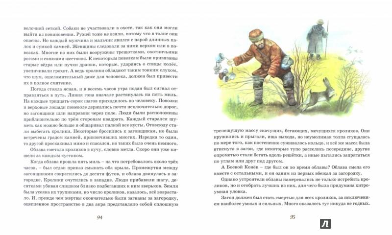Иллюстрация 1 из 21 для Рассказы о животных - Эрнест Сетон-Томпсон | Лабиринт - книги. Источник: Лабиринт