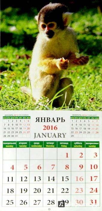 Иллюстрация 1 из 2 для Календарь на 2016. Год обезьяны (45606)   Лабиринт - сувениры. Источник: Лабиринт