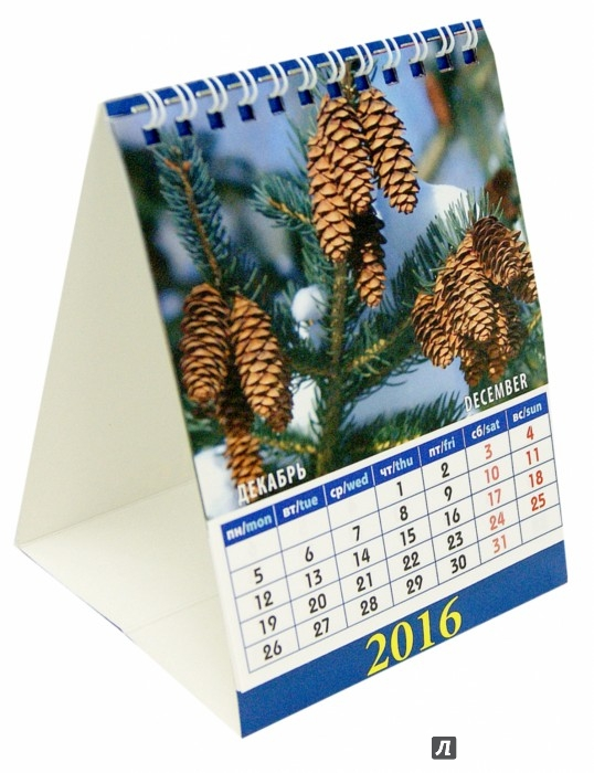 Иллюстрация 1 из 4 для Календарь настольный на 2016. Домик. Календарь природы (10603) | Лабиринт - сувениры. Источник: Лабиринт