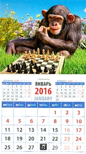 Иллюстрация 1 из 2 для Календарь на магните на 2016 год. Год обезьяны. Шимпанзе - шахматист (20628)   Лабиринт - сувениры. Источник: Лабиринт