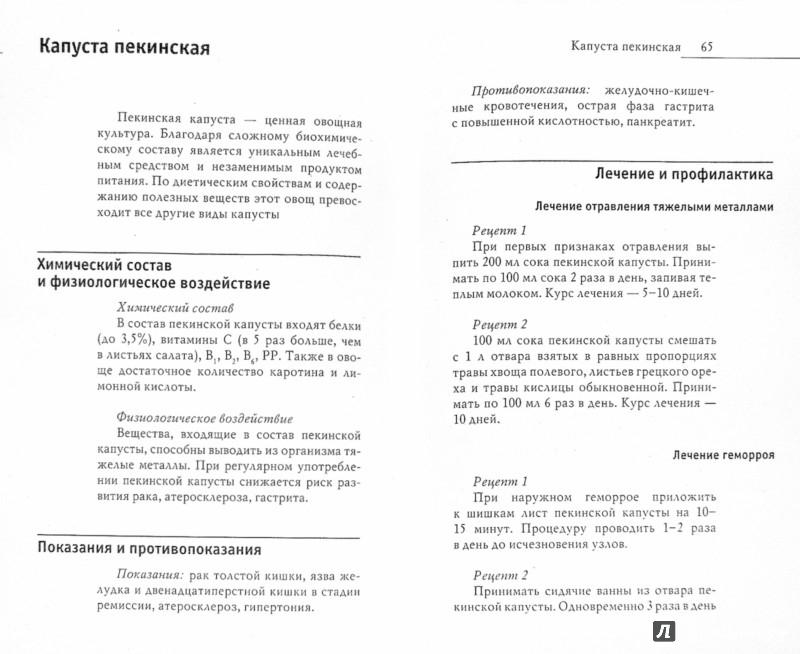 Иллюстрация 1 из 6 для Лечимся овощами. Целители с грядок - Дарья Нестерова | Лабиринт - книги. Источник: Лабиринт