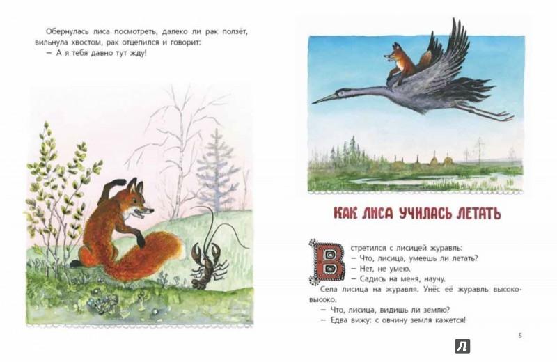 Иллюстрация 1 из 36 для Сказки про лису   Лабиринт - книги. Источник: Лабиринт