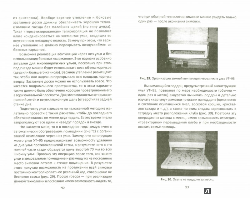 Иллюстрация 1 из 7 для Начало пчеловодного дела - Валерий Корж | Лабиринт - книги. Источник: Лабиринт