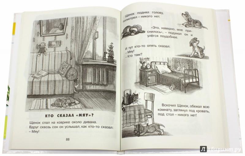 Иллюстрация 1 из 5 для Любимые сказки в картинках - Владимир Сутеев | Лабиринт - книги. Источник: Лабиринт