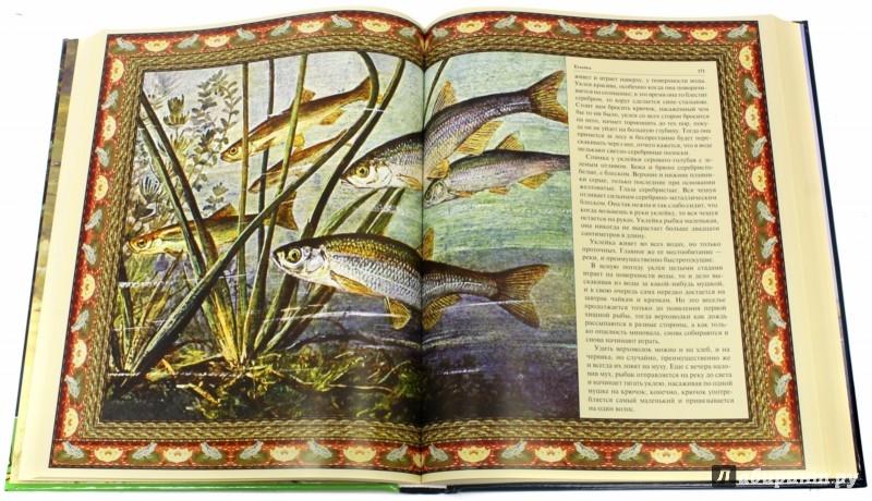 Иллюстрация 1 из 8 для Русская рыбалка (в коробе) | Лабиринт - книги. Источник: Лабиринт