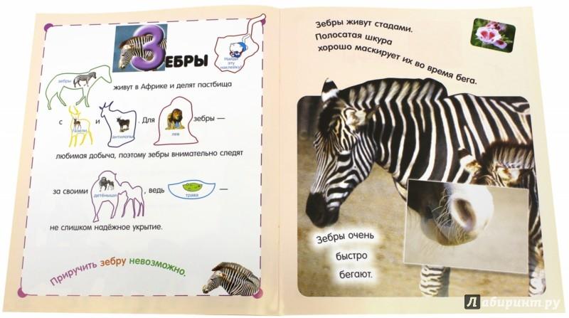 Иллюстрация 1 из 3 для Читай, играй, наклеивай. В жарких странах   Лабиринт - книги. Источник: Лабиринт