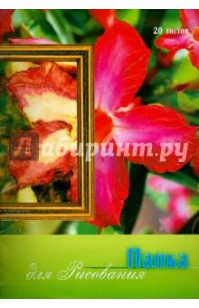 """Папка для рисования """"Орхидея"""" (20 листов, А4) (С0271-06) АппликА"""