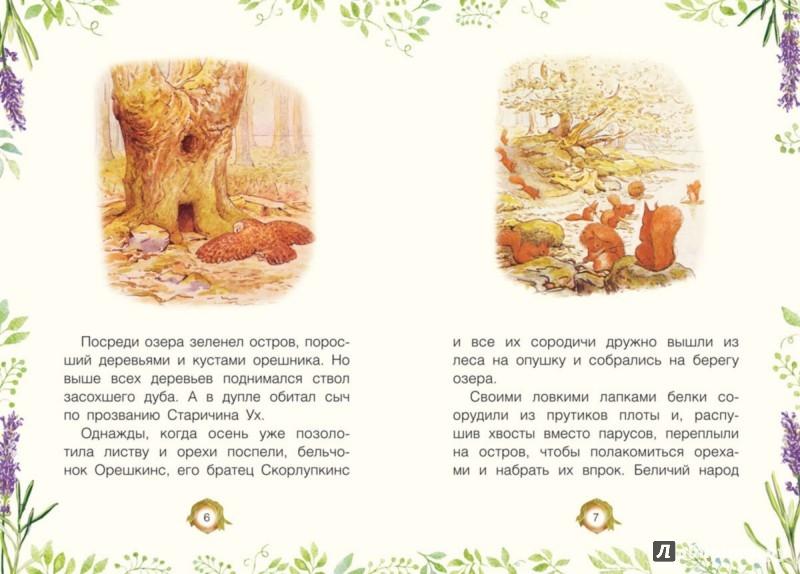 Иллюстрация 1 из 17 для История о бельчонке Орешкинсе - Беатрис Поттер | Лабиринт - книги. Источник: Лабиринт