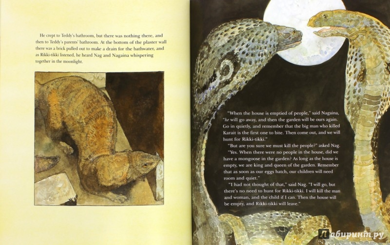 Иллюстрация 1 из 5 для Rikki-Tikki-Tavi - Rudyard Kipling   Лабиринт - книги. Источник: Лабиринт