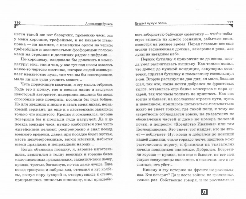 Иллюстрация 1 из 5 для Дверь в чужую осень - Александр Бушков   Лабиринт - книги. Источник: Лабиринт