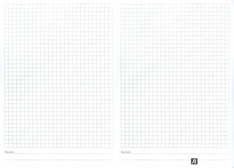 Иллюстрация 1 из 5 для Тетрадь Копибук (КОРИЧНЕВАЯ, 96 листов, А5, клетка, закрывается на резинку) (38942-15) | Лабиринт - канцтовы. Источник: Лабиринт