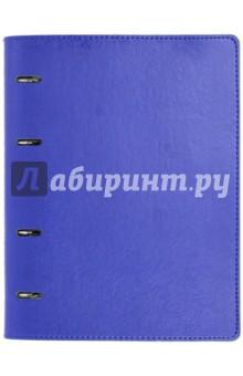 Тетрадь (80 листов, на кольцах, клетка, Синяя + Салатовая) (37931-10) Феникс+