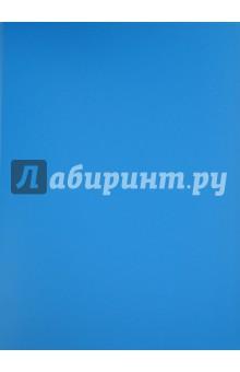 Папка с файлами (10 файлов, синяя) (CY1421-B)