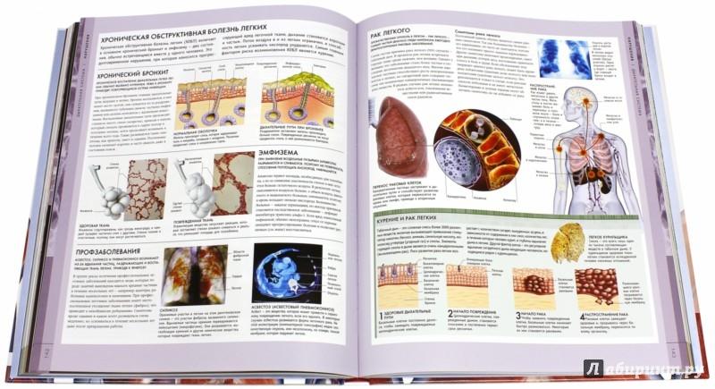 Большой иллюстрированный справочник по анатомии, физиологии и патологии