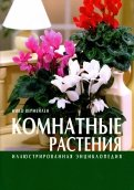 Нико Вермейлен: Комнатные растения. Иллюстрированная энциклопедия