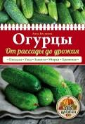 Анна Белякова: Огурцы. От рассады до урожая