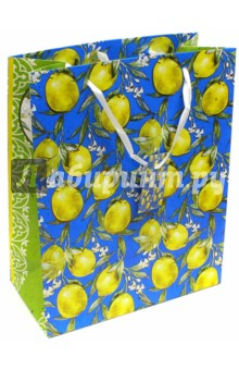 Пакет бумажный Лимоны (26х32,4х12,7 см) (40879)Подарочные пакеты<br>Пакет бумажный для сувенирной продукции.<br>Размер: 26х32,4х12,7 см.<br>Ламинированный.<br>Ручки: ленты.<br>Плотность бумаги: 250 г/м2<br>Сделано в Китае.<br>
