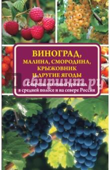 Жвакин Виктор Владимирович Виноград, малина, смородина, крыжовник и другие ягоды