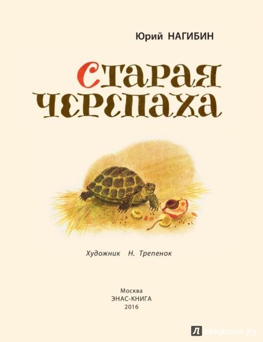 старая черепаха нагибин слушать