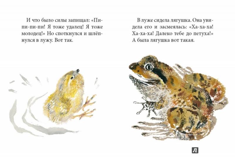 Иллюстрация 3 из 57 для Цыпленок - Корней Чуковский | Лабиринт - книги. Источник: Лабиринт