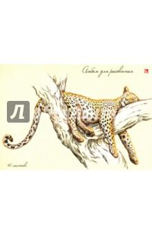 """Альбом для рисования """"Леопард на дереве"""" (40 листов, склейка) (АЛ401297) Эксмо-Канц"""