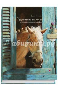Удивительные кони. Истории, рисунки и фотографии