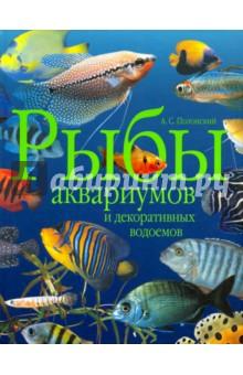 Рыбы аквариумов и декоративных водоемовАквариум. Террариум<br>Настоящее издание - популярный, богато иллюстрированный справочник по аквариумистике, в котором охарактеризовано более 1000 видов, подвидов и форм рыб из умеренных широт Северного полушария, экзотических пресноводных и морских рыб, а также приведены сведения об условиях их содержания в неволе. Домашний аквариум или декоративный водоем - не только украшение интерьера или ландшафта, это насыщенный жизнью уголок, где каждый компонент имеет свое экологическое значение, начиная с камней и подводных растений и кончая теми обитателями, для которых он и создавался. Какой тип аквариума выбрать и как правильно его обустроить, какого качества должна быть вода, температурный и световой режим, как правильно заселить аквариум и какие посадить там растения - ответы на эти и другие многочисленные вопросы, безусловно, пригодятся как начинающим, так и опытным любителям аквариумистики. <br>Кандидат биологических наук А.С.Полонский - автор наиболее информативных и востребованных книг об аквариумных рыбах.<br>