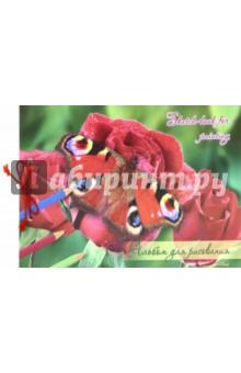 """Альбом для рисования на сутаже """"Бабочки"""" (40 листов, А4) (АЛ 009/40) Лилия Холдинг"""