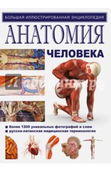 Иллюстрированный атлас. АнатомияАнатомия и физиология<br>На страницах этой большой иллюстрированной энциклопедии вы найдете полный анатомический курс:<br>- уникальные фотографии анатомических срезов, тончайшим образом передающие цветовые и структурные особенности строения организма;<br>- обучающие схемы, которые дополняют и разъясняют отличные цветные фотографии анатомических срезов;<br>- дидактический материал, освещающий фундаментальные аспекты строения органов и систем;<br>- разъяснение функциональных связей между отдельными органами и их системами;<br>- принцип изучения срезов от внешнего к внутреннему, при препарировании в лаборатории и в клинической работе;<br>- описание современных методов визуализации особенностей строения органов и систем организма;<br>- удобный всесторонний предметный указатель;<br>- таблицы нервной и мышечной систем.<br>6-е издание.<br>