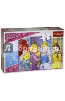 Trefl. Puzzle-30 MIDI Сказочные принцессы (18205)Пазлы (15-50 элементов)<br>Пазл-мозаика.<br>Размер готовой картинки 27х 20 см.<br>Количество элементов: 300<br>Для детей от 5 лет.<br>Сделано в Польше.<br>