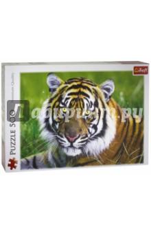 Trefl. Puzzle-500 Тигр (37192)Пазлы (400-600 элементов)<br>Пазл-мозаика.<br>Количество элементов: 500<br>Размер готовой картинки 48х34 см.<br>Материал: картон, бумага<br>Упаковка: картонная коробка.<br>Сделано в Польше.<br>