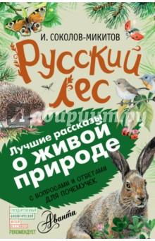 Русский лес. С вопросами и ответами для почемучек фото